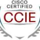 CCIE17603