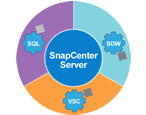 Control Your Data as It Moves Throughout the Data Fabric with NetApp SnapCenter