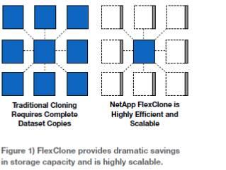 FlexClone.jpg