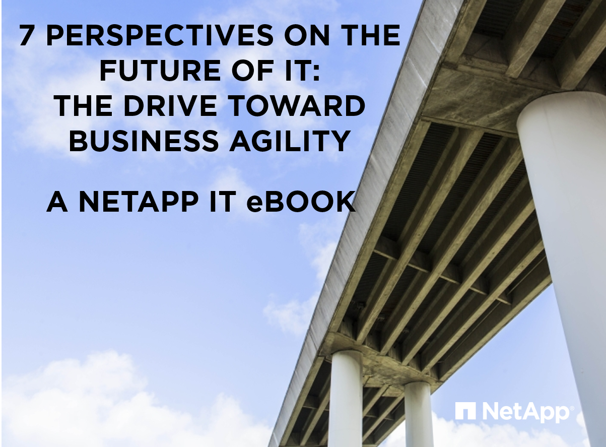 Ebooks netapp community download ebook 7 perspectives on the future of it the drive toward business agility fandeluxe Epub