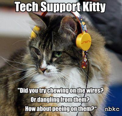 Tech Support Kitty Meme